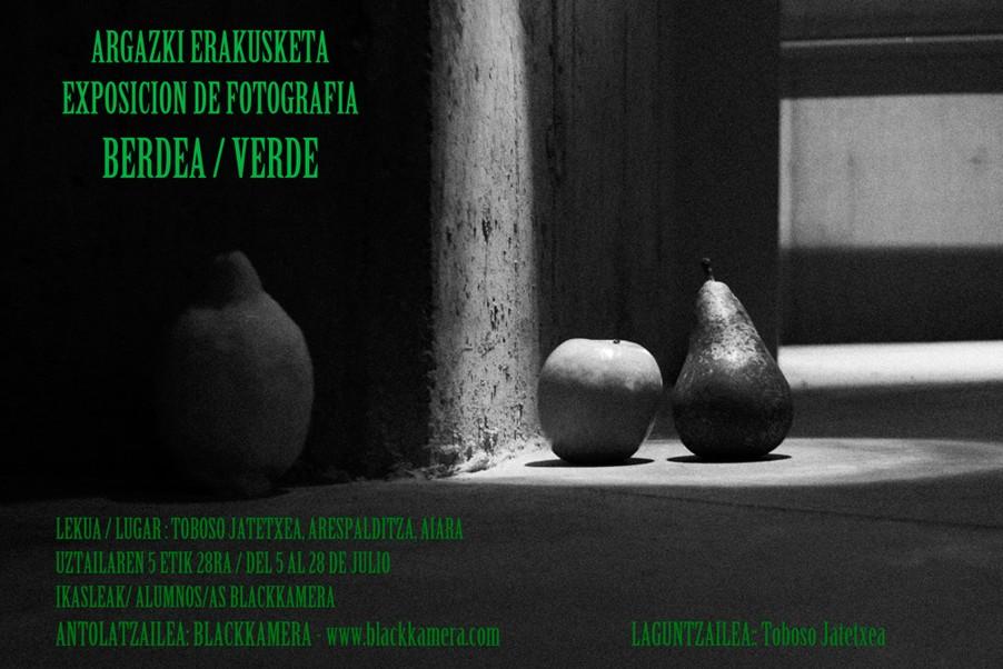Exposiciòn en Aiara con el proyecto Berdea / Verde